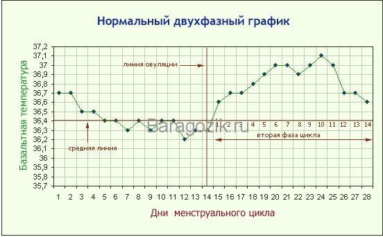 Двухфазный график