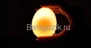 опыты с яйцом для детей